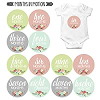 Months In Motion - Baby Month Stickers - Monthly Baby Sticker for Girls - Flo...