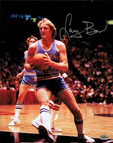 Larry Bird Autographed Signed Indiana State 8 x 10 Photo W/COA - Mint ()
