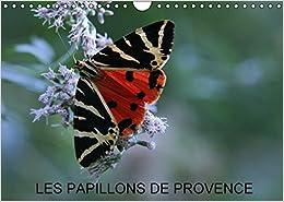 Book Les Papillons de Provence 2016: Les Beaux Papillons aux Couleurs de la Provence (Calvendo Nature)