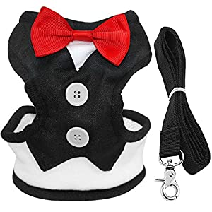 "Didog Velvet Tuxedo Gentleman suit Dog Harness Vest with Handle for Small Medium Dogs,Pug, Jack Russell,Terrier,Poodle,Puppy(Black,Chest 12-18"")"