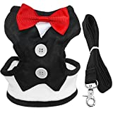 "Didog Velvet Red Bowtie Tuxedo Dog Harness With Leash - Best For Boy Gentleman Pets Party3 Sizes of Didog Harness and Leash: Harness chest circumference: S - Neck : 7-13""(18-32cm);Chest: 10-17""(25-42cm)M - Neck : 8-14""(20-35cm);Chest: 12-18""(..."