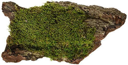 (Galapagos (05276 Basking Bark, Sheet Moss, 1 Pc. )