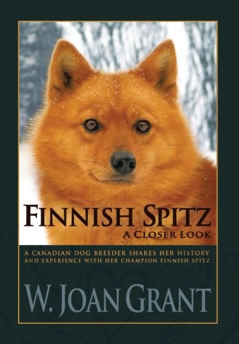 Finnish Spitz: A Closer Look