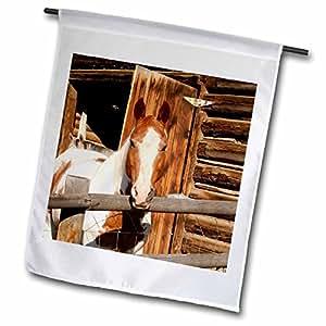 Danita Delimont - Horses - USA, Salmon, Idaho, Horses at Log Barn - US13 GRE0049 - Gerry Reynolds - 18 x 27 inch Garden Flag (fl_90099_2)