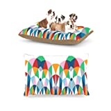 Kess InHouse Project M ''Modern Day Arches'' Fleece Dog Bed, 30 by 40-Inch