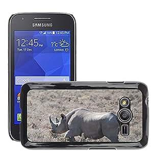Etui Housse Coque de Protection Cover Rigide pour // M00116418 Parque Nacional de Etosha Safari Rhino // Samsung Galaxy Ace4 / Galaxy Ace 4 LTE / SM-G313F