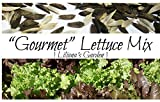 Liliana's Garden Lettuce Seeds - Mixed Lettuce and Greens - Heirloom Varieties