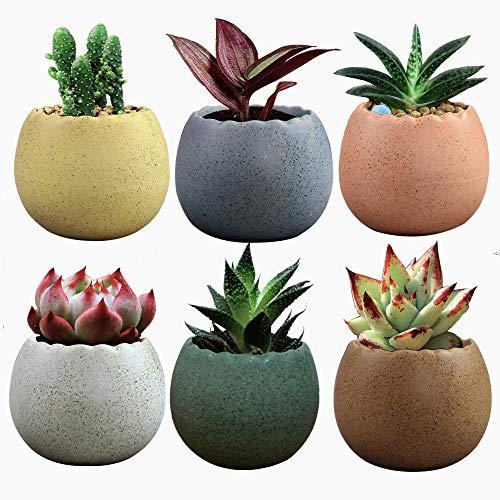 2.75 Inch Ceramic Succulent Pot, Adorable Eggs Design Cactus Planter Pots Mini Plant Container Flower Pot Decorative Pots with Drainage Hole Mesh Pad, Set of 6