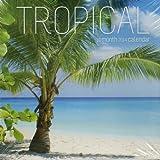 2014 Tropical 16 Month Calendar 8 X 8 Inches