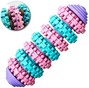 Win A Free DOMINO TOY HACHI Dog Chew Toy | Durable Non Toxic | Treat...