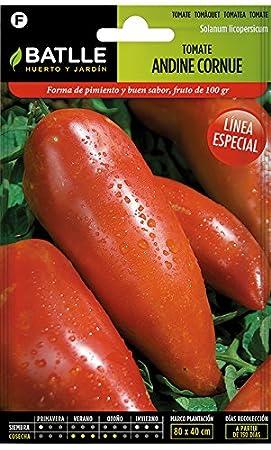 Semillas Hortícolas - Tomate Andine Cornue - de los Andes - Batlle: Amazon.es: Jardín