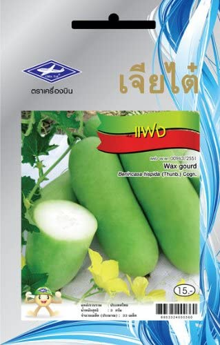 33 Seeds Wax Gourd Thai Vegetable Plant Chia Tai