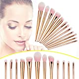 Anastasia Concealer 1 5 CoKate 12pcs Pro Makeup Brushes Set Powder Foundation Eyeshadow Eyeliner Lip Brush Tool