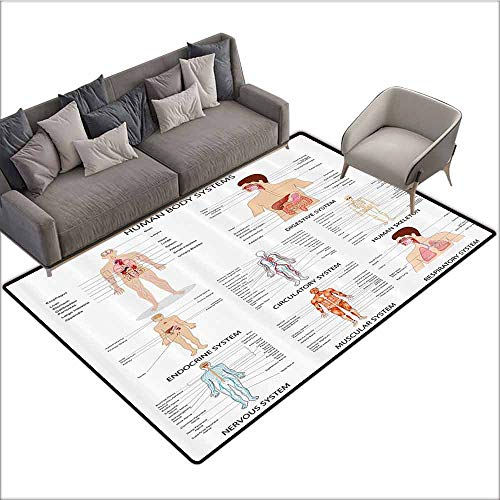 Anti-Fatigue Comfort Mat Human Anatomy,Complete Chart of Different Organ Body Structures Cell Life Medical Illustration,Multi 80