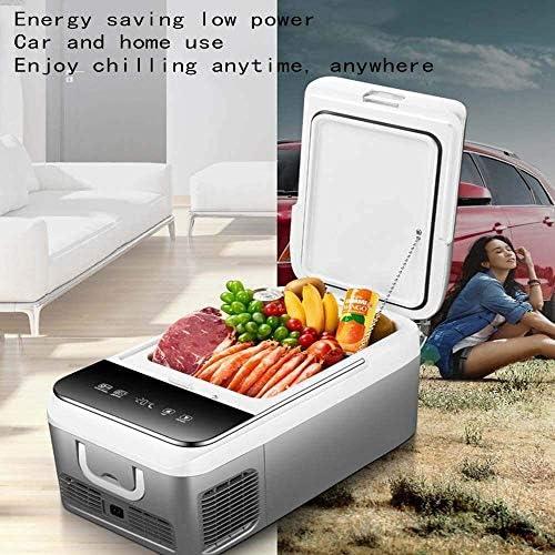 KOIUJ リッターカーコンプレッサー冷凍車や家庭用冷暖房ボックス12V / 220Vポータブルコンパクトカー用、トラック、ボート、カラー:デュアルユース
