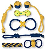 #2: Premium Dog Chew Toy Set by Terrier Chewz. Pack of 8 Unique Rope and Rubber Toys. Suitable Kit for Small to Medium Pets from Puppy to Full Grown. For Indoor and Outdoor Use. Durable and washable.