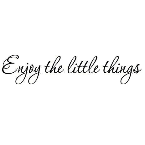 Amazon.com: Enjoy the Little Things Vinyl Wall Decal Saying Family ...