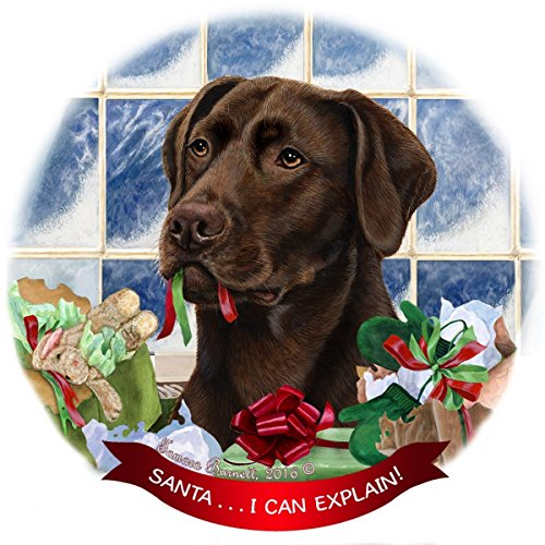 ab Dog Porcelain Hanging Ornament Pet Gift 'Santa.. I Can Explain!' for Christmas Tree and Year Roun ()