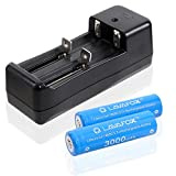 18650 Battery,2 Pcs 3.7V Rechargeable Li-ion Batteries with Dual Smart Lithium Battery Charger,High Capacity for flashlights and other high drain devices (Blue)
