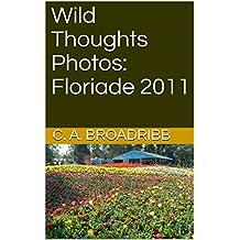 Wild Thoughts Photos:  Floriade 2011