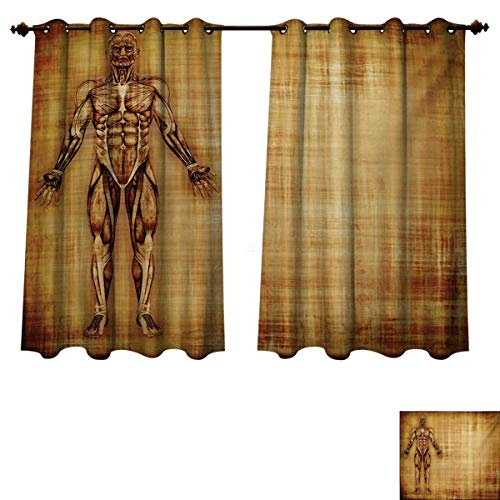 (RuppertTextile Human Anatomy Bedroom Thermal Blackout Curtains Grunge Old Parchment Effect Skeleton Muscles of Human Body Retro Art Print Drapes for Living Room Pale Brown W55 x L39 inch)