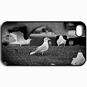Personalized Protective Hardshell Back Hardcover For iPhone 4/4S, Bird Design In Black Case Color