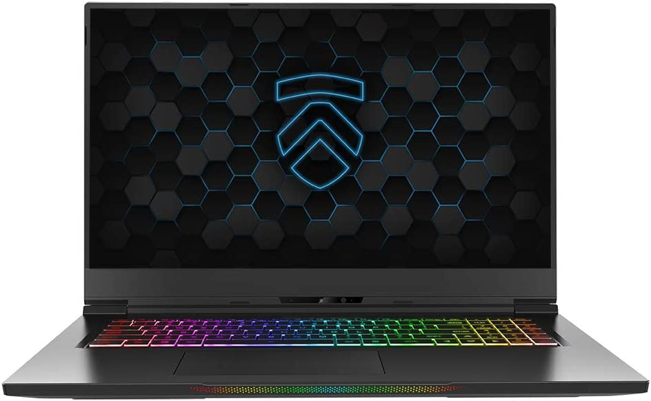 "Eluktronics MAX-17 Covert Gamer Notebook PC: Intel i7-10875H 8-Core NVIDIA GeForce RTX 2080 Super 240Hz Calibrated FHD IPS W10 Home 2TB NVMe SSD 64GB DDR4 RAM - World's Lightest 17.3"" Gaming Laptop"