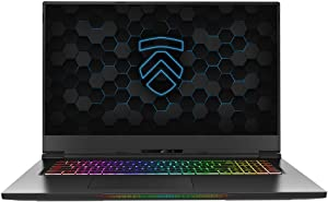 "Eluktronics MAX-17 Covert Gamer Notebook PC: Intel i7-10875H 8-Core NVIDIA GeForce RTX 2070 144Hz Calibrated FHD IPS W10 Home 2TB NVMe SSD 64GB DDR4 RAM - World's Lightest 17.3"" Gaming Laptop"