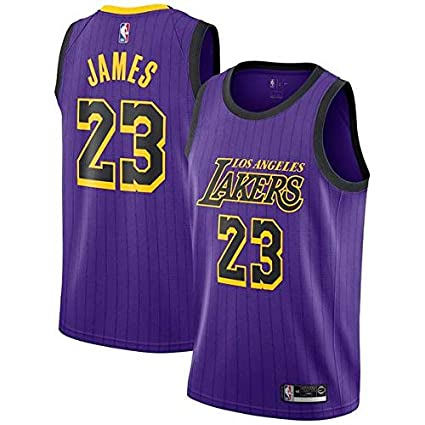 brand new e4168 171ec Mitchell & Ness Men's Los Angeles Lakers Lebron James Dri-FIT Purple City  Edition Swingman Jersey