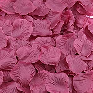 Gresorth Red Wine Fake Silk Rose Petals Artificial Petal Flower Wedding Bridal Decoration - 2000 PCS 14
