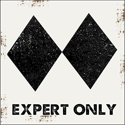 (Expert Only Ski Slope Metal Sign, Double Black Diamond, Advanced, Alpine, Mountain, Cabin, Lodge )