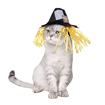 WEATLY Carnaval Divertido Parche Espantapájaros Sombrero Mascotas Perro y Gato Disfraces para Fiestas Fiestas como Halloween, Navidad y Pascua (Color ...
