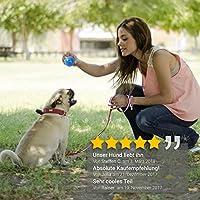 PetPäl Pelota de Caucho Natural para Perros: Amazon.es: Productos para mascotas