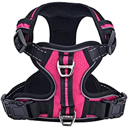 PUPTECK Best No-Pull Dog Harness with Vertical Handle,Calming Adjustable Reflective Outdoor Adventure Pet Vest,Pink L