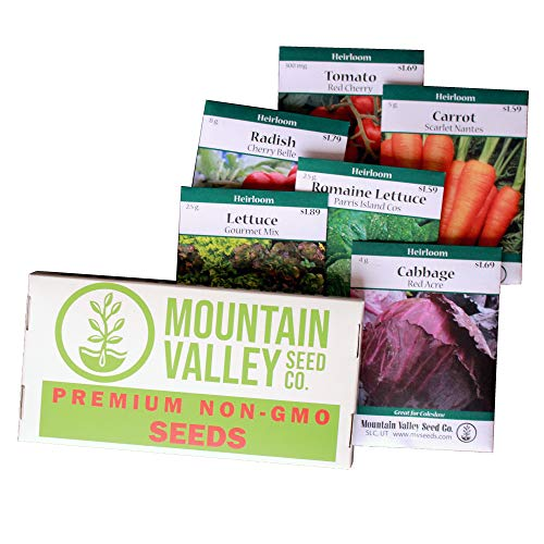 Salad Garden Seed Collection | Basic Assortment | 6 Non-GMO Vegetable Gardening Seed Packets: Lettuce, Carrot, Tomato, Cabbage, - Cabbage Packet Seed