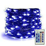 ER CHEN Dimmable LED String Lights Plug In, 66ft 200 LED Waterproof Blue Color Fairy Lights with Remote, Indoor/Outdoor Copper Wire Christmas Decorative Lights for Bedroom, Patio, Garden, Yard, Party