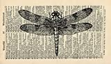 Dragonfly Art Print - Vintage Dictionary Art Print - Vintage Art Print - Nursery Art print - Wall Art Print - Gift - Animal Artwork - Dictionary Page - Illustration - Wall Hanging - Book Print 502B