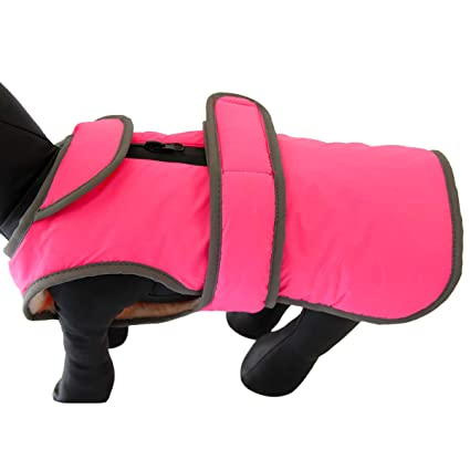 bd467b45c311 Amazon.com   vecomfy Small Dog Jackets with Semicircular Lapel ...