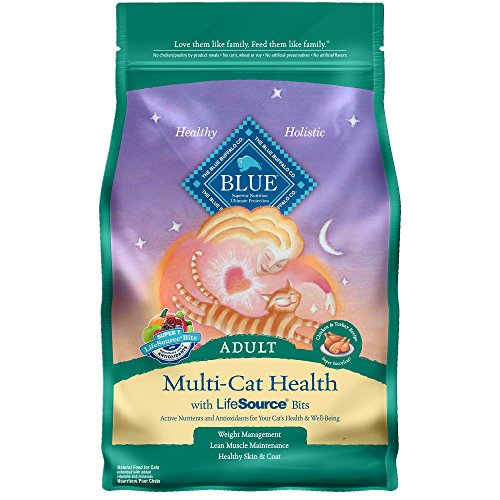 Blue-Buffalo-Life-Protection-Dry-Adult-Cat-Food