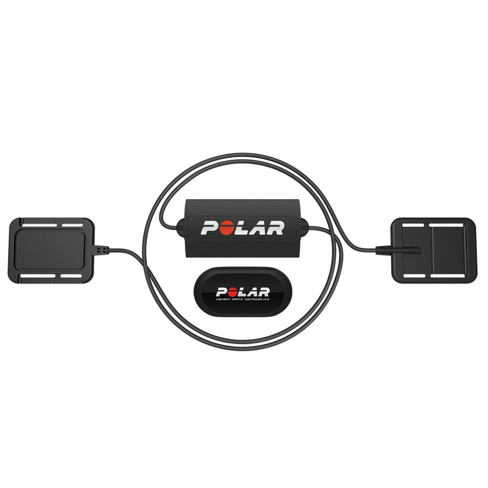 Polar - Sensor cardíaco Equine H2 más electrodo: Amazon.es: Deportes ...