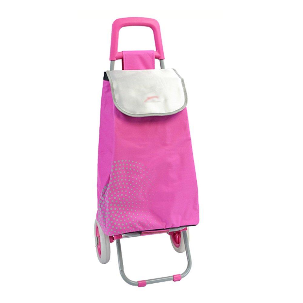 ZR-ショッピングカート 夏の冬の断熱ショッピングカート折り畳み式のポータブルショッピングカートピンクのエクストララージアイスパック -ショッピングと持ち運び B07FRTGLP5
