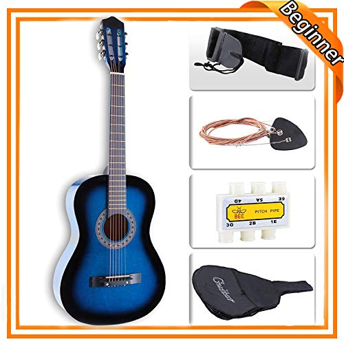 Acoustic-Electric Guitars