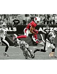 Arizona Cardinals Larry Fitizgerald 8x10 Photo, Picture