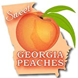GEORGIA PEACH FRAGRANCE OIL - 2 OZ - FOR CANDLE & SOAP MAKING BY VIRGINIA CANDLE SUPPLY - FREE S&H IN USA