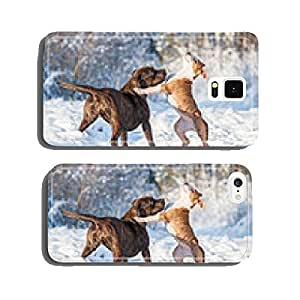 Two american staffordshire terrier dogs playing in winter cell phone cover case iPhone6