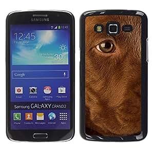 TopCaseStore / la caja del caucho duro de la cubierta de protección de la piel - Golden Labrador Retriever Dog Puppy - Samsung Galaxy Grand 2 SM-G7102 SM-G7105