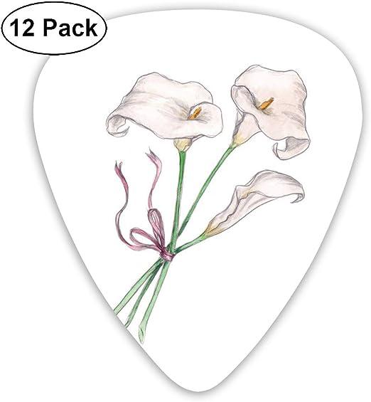 Amazon Com Calla Lily Flower Drawing Guitar Picks 12 Ukulele Picks Including 0 46 Mm 0 71 Mm 0 96 Mm Acoustic Guitar