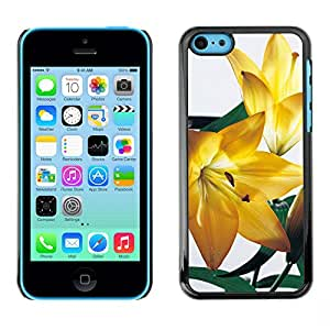 Stuss Case / Funda Carcasa protectora - Glory Of Sun Kissed Petals - iPhone 5C