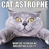 Cat-Astrophe 2020 Wall Calendar