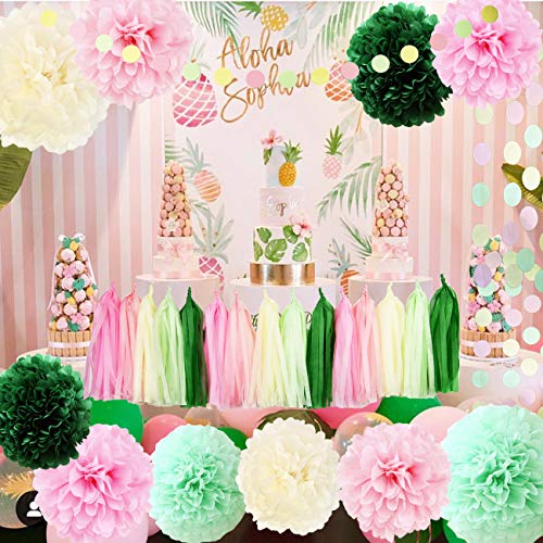 Watermelon Birthday Party Supplies/Watermelon Theme Decorations/Spring Color Baby Shower Decorations Pink Green Tisssue Pom Pom Watermelon Party Supplies for Summer Party Decorations, BBQs, -